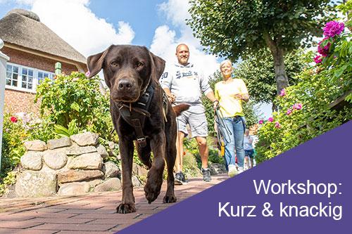 Mantrailing-Workshop: Kurz & knackig